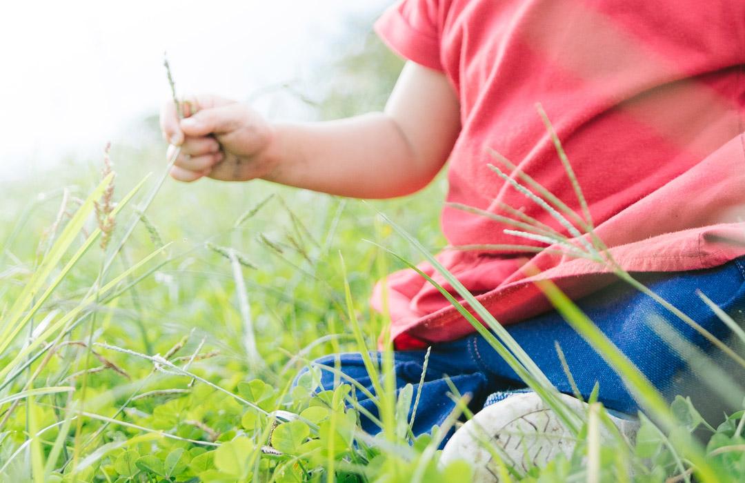 将来の夢の作文を書こう